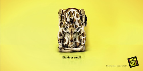 big does small 3
