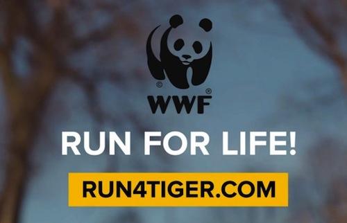 hungry boys run for life